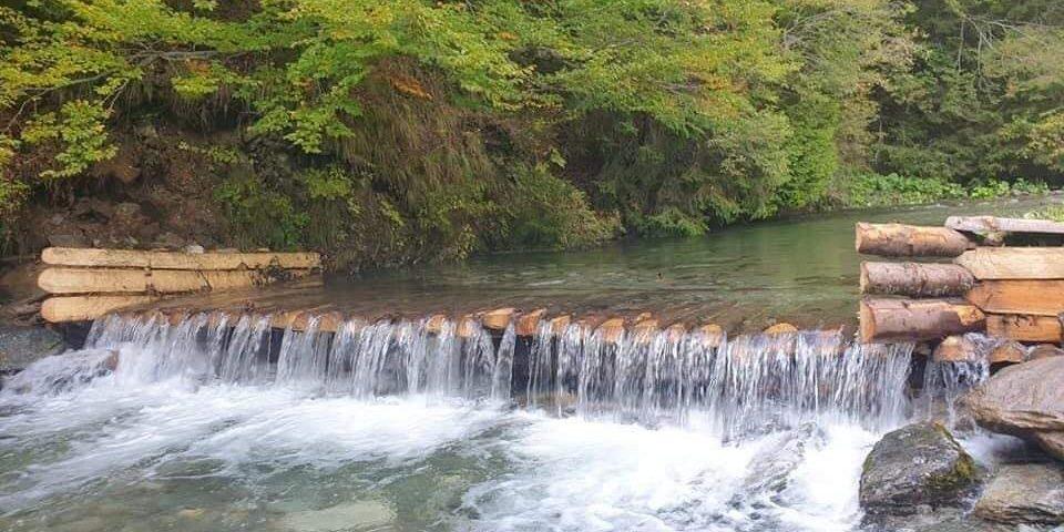 Parcului Naținal Munții Rodnei
